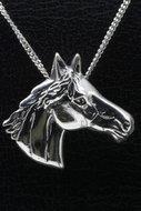 Paarden (65)