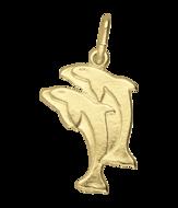 Dolfijn (10)