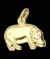 Nijlpaard  (1)