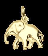 Olifant (1)