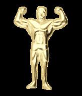 Bodybuilding & Fitness (14)