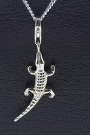 Krokodil (1)