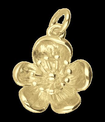 Gouden Boterbloem ketting hanger