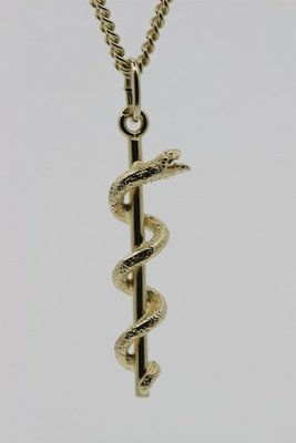 Gouden Esculaap ketting hanger