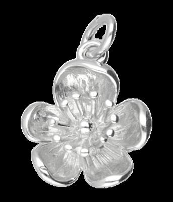 Zilveren Boterbloem ketting hanger