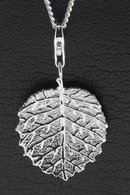 Zilveren Hazelnoot blad hanger en/of bedel