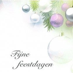 "Wenskaart ""Fijne Feestdagen"""