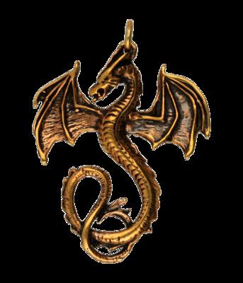 Draak ketting hanger - brons