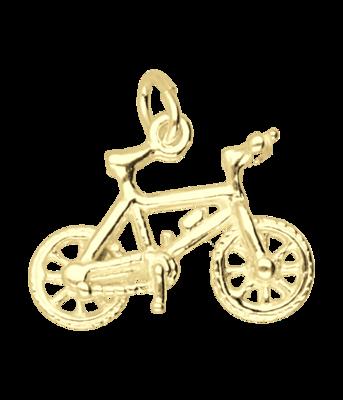 Gouden Mountainbike ketting hanger