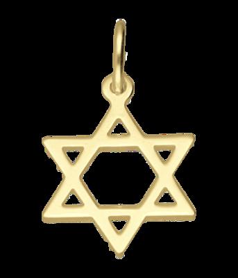 Gouden Davidster ketting hanger