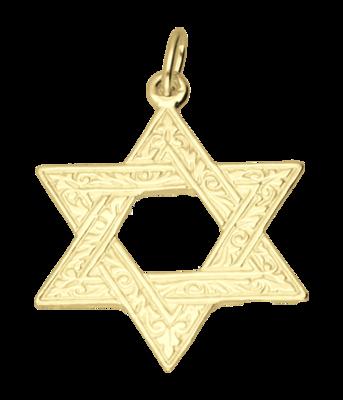 Gouden Davidster bewerkt ketting hanger