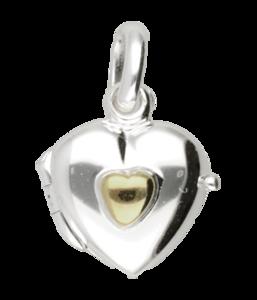 Zilveren Foto medaillon hart met gouden hart hanger - klein